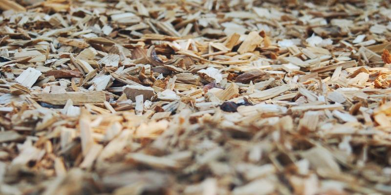 high definition picture of mulch